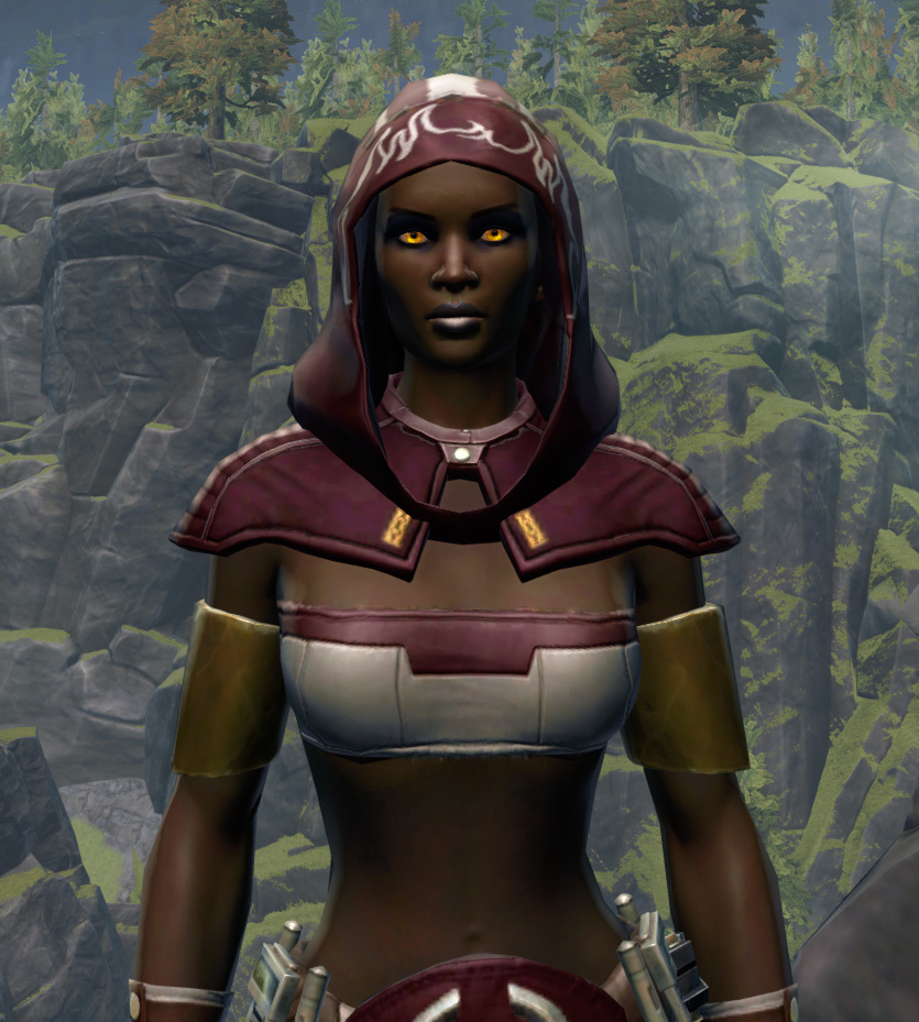 Able Hunter Armor Set from Star Wars: The Old Republic.
