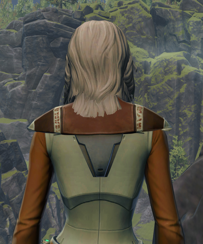 Armored Diplomat Armor Set detailed back view from Star Wars: The Old Republic.