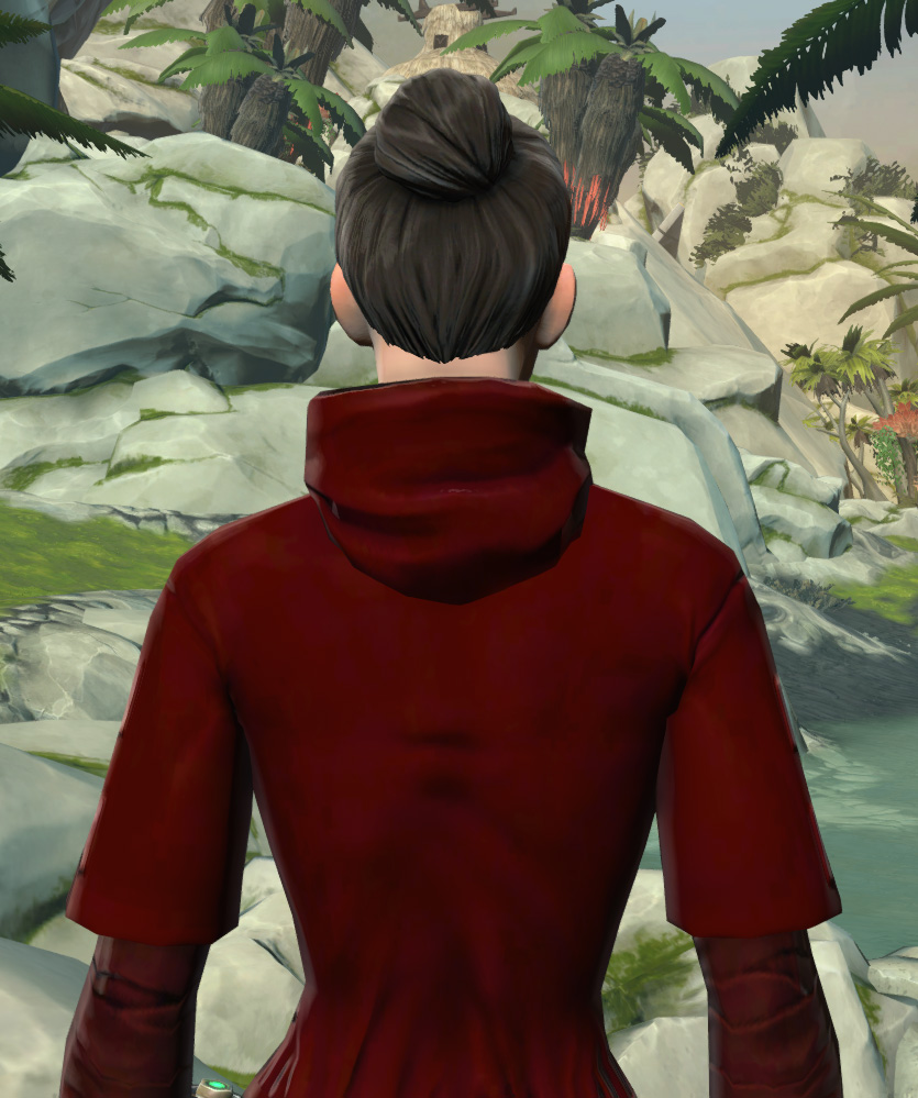 Festive Life Day Robes Armor Set detailed back view from Star Wars: The Old Republic.