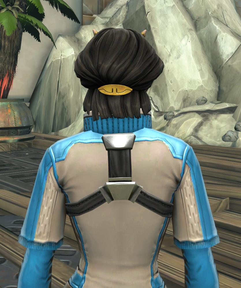 Republic Practice Jersey Armor Set detailed back view from Star Wars: The Old Republic.