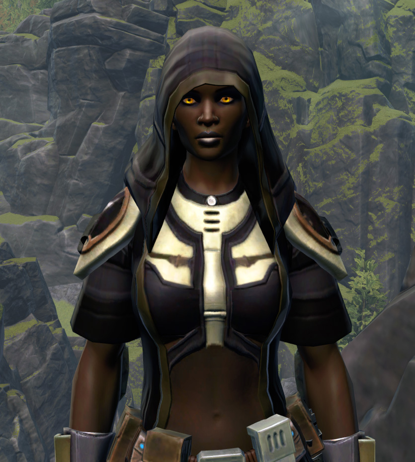 Unburdened Champion Armor Set from Star Wars: The Old Republic.