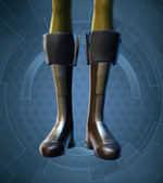 Fortified Lacqerous Boots